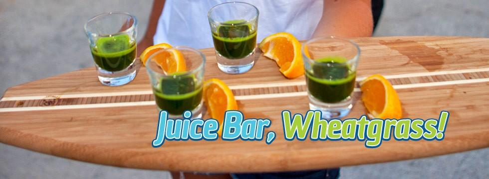 Organic Juice Bar & Wheatgrass